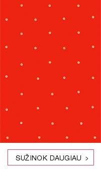 Maža raudona knygutė
