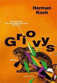 Griovys