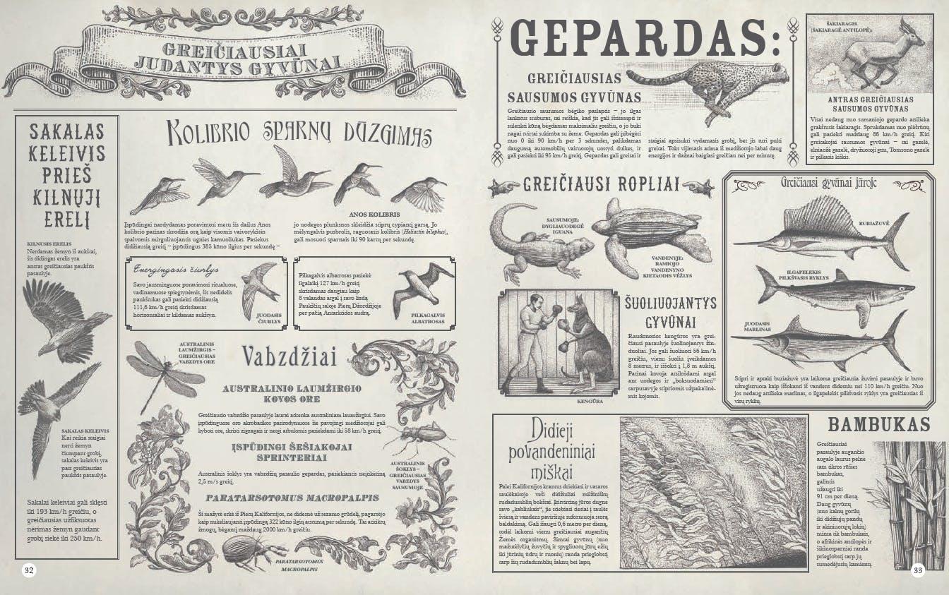 """Enciklopedija """"Didžiulis Kalnas, Bedugnis vandenynas"""". Greičiausi pasaulio gyvūnai"""